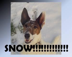 SNOW!!!!!!!!!