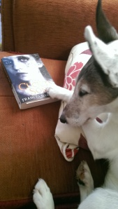 Of course every author wants Eddie to pose with their book now...